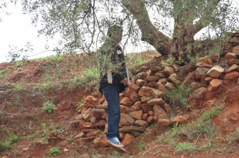 """سيدي افني: شبح محاولة """"الانتحار"""" يعصف بـ3 شبان"""