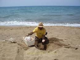 أكادير: سارق أغراض المصطافين بالشاطئ في قبضة الأمن